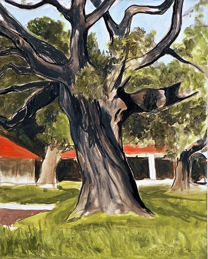 Untitled 16 (Jollyman tree)