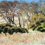 Untitled 139 (California field)