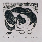 Untitled 193 (kitty)